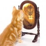 Manjak znanja = višak samopouzdanja!